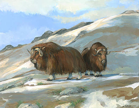 Musk Oxen by ACE Coinage painting by Michael Rothman