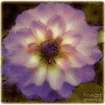 Muted Flower by Deborah MacQuarrie