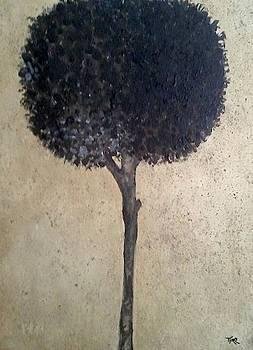 Mirko Gallery - My Black Lotus