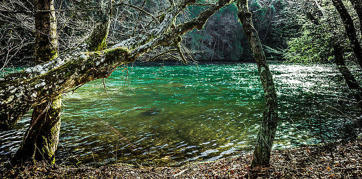 My Brother's River by Karen Wiles