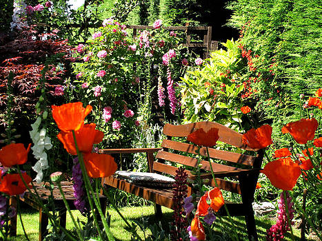 My English Garden by Jacqi Elmslie