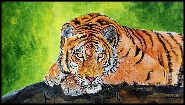 My Eyes Are On You.... by Sonali Sengupta