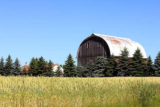 My Favorite Barn by Sheryl Burns