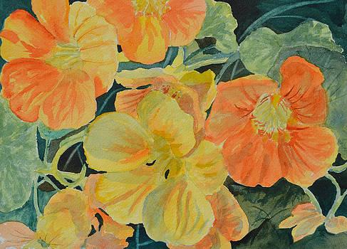 My Garden Flowers by Betty Mulligan