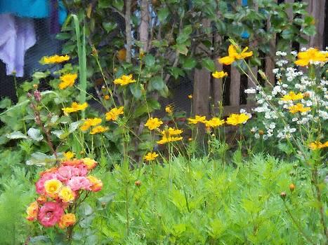 My garden by Gabriel Mackievicz Telles