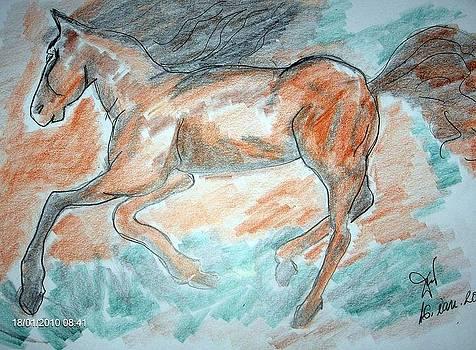 My   Horse by Farfallina Art -Gabriela Dinca-