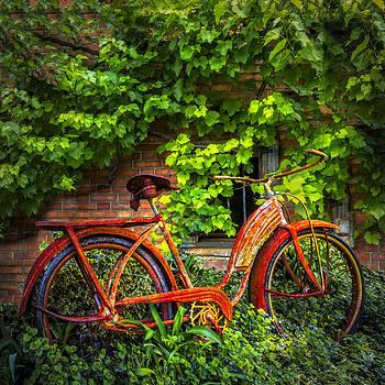 Debra and Dave Vanderlaan - My Old Bicycle