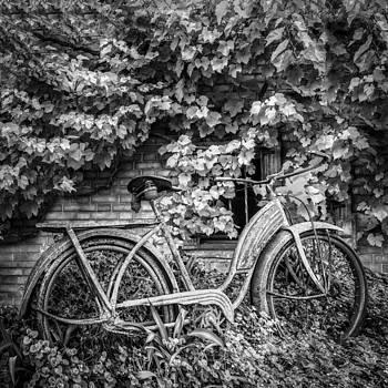 Debra and Dave Vanderlaan - My Old Bicycle in Black and White