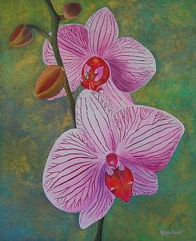 My Orchids by Mary Ann Leake