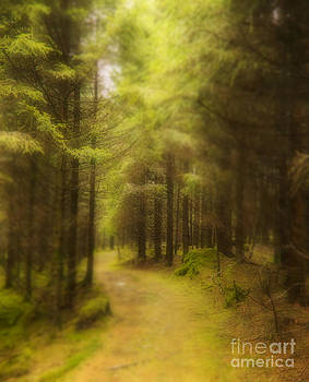 My way by Gry Thunes