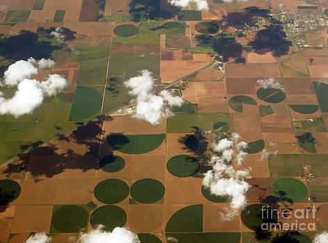 Mysterious circles of Texas 01 by Ausra Huntington nee Paulauskaite