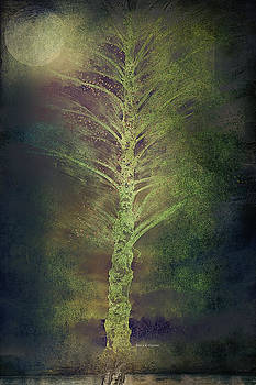 Angela A Stanton - Mysterious Tree in Moonlight
