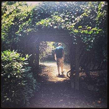 #mystery #garden #playtime #nature by Megan Rudman
