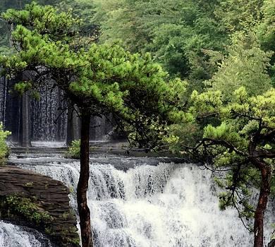 Maria Urso  - Mystery of the Falls