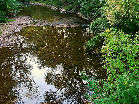 Mystic Creek by Tanya Renee Herb