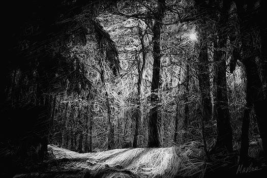 Mystic forest by Marina Likholat