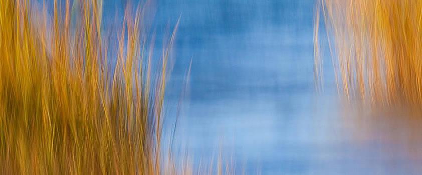 Mystic Marsh by Rebecca Skinner
