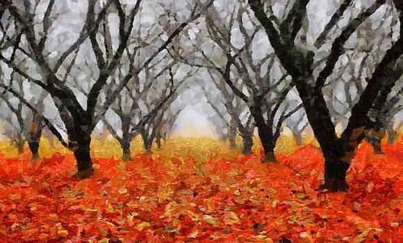 Naked trees by George Rossidis
