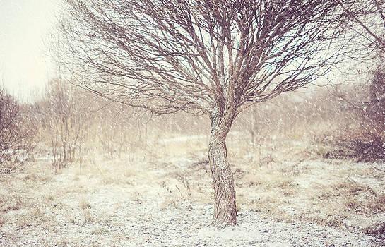 Jenny Rainbow - Naked Willow Tree. Winter Poems