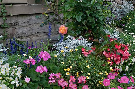 Randall Branham - Name All Flowers Planted Here