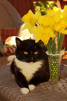 Nancy Oreo Celebrates Spring by Kathy Barney