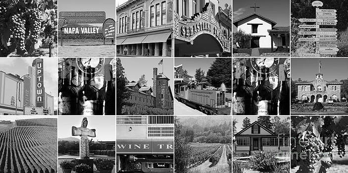 Wingsdomain Art and Photography - Napa Sonoma County Wine Country 20140906 black and white