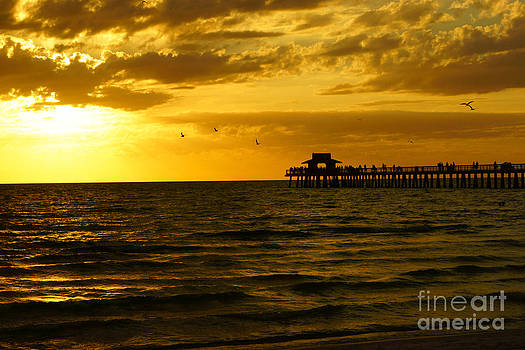 Naples Pier Sunset by Tina Stoffel