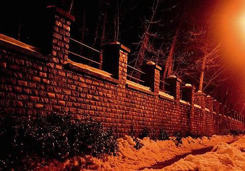 Narrow Path by Richie Stewart