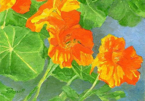 Nasturtiums Flowers Garden Small Oil Painting by K Joann Russell
