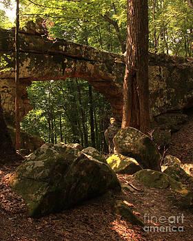 Natural Bridge  by Janet Felts