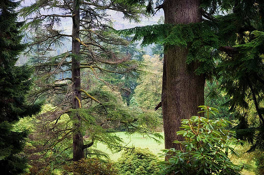 Jenny Rainbow - Natural Magnetism. Scotland