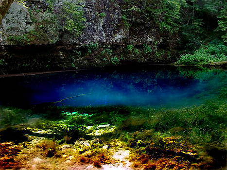 Natural Spring Water by Patricia Erwin