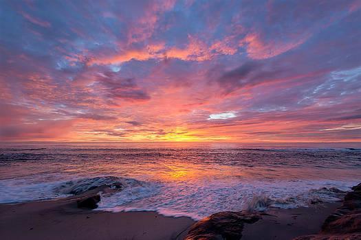 Nature's Beauty by Mark Whitt
