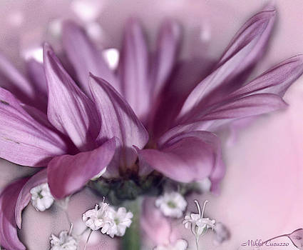 Nature's Beauty by Mikki Cucuzzo