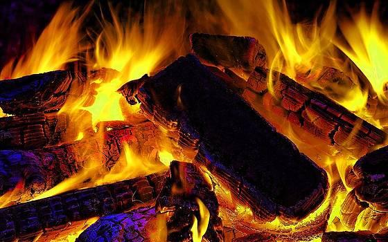 Natures Fire by Robert Rhoads