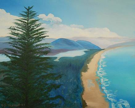 Neakanie Bay - Oregon by Dorothy Merritt