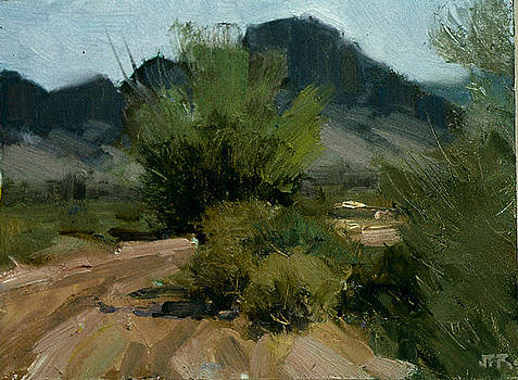 Near Taos Nm by John Reynolds