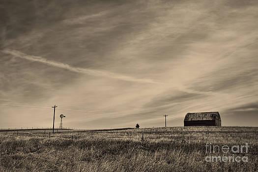 An Abandoned Nebraska Barn by Steve Triplett
