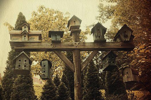 Laurie Perry - Neighborhood Flock