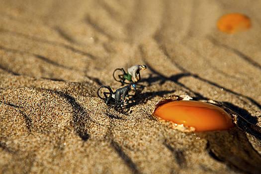 Nella spiaggia di Sperlonga escono fuori tuorli d'uovo by Toni Polinni