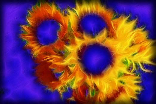 Cindy Boyd - Neon Sunflowers