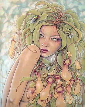 Nepenthes  by Fay Helfer