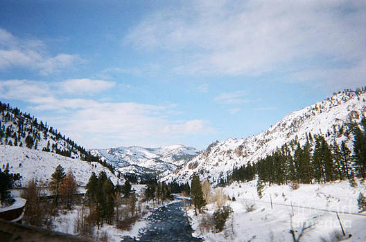 Nevada Winter  by Sarah Card