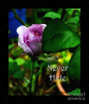 Never Hide by Eva Thomas
