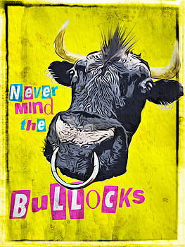 Never mind the bullocks. by Duncan Roberts
