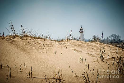 Paul Velgos - New Buffalo Lighthouse and Beach Sand Grass