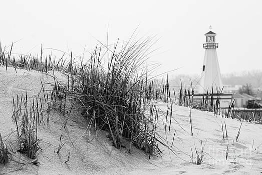 Paul Velgos - New Buffalo Michigan Lighthouse and Beach Grass