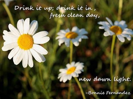 New Day by Bonnie Fernandez