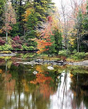 New England Autumn #1 by Patrick Derickson