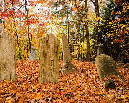 Sonja Quintero - New Hampshire Mountain Cemetery